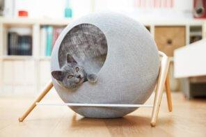 Cuccia per gatti Ball by Meyou: un alloggio di design per il tuo felino domestico
